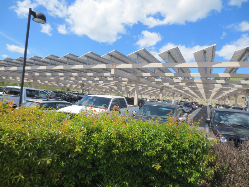 High School Students' Cars Under the Solar Panels on Earth Day